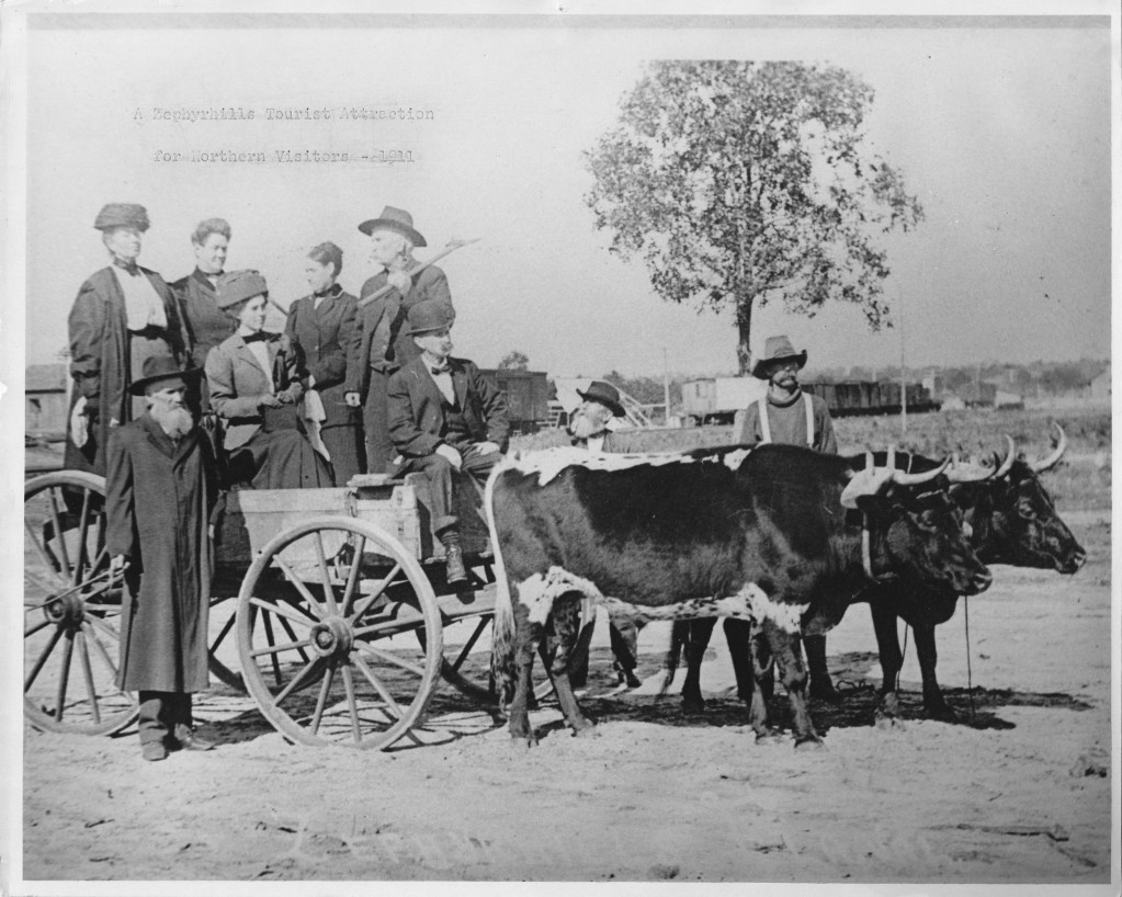 Chancey family - early days in a wagon pulled by oxen